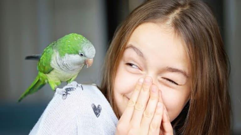 "Learn how to speak ""bird language"""