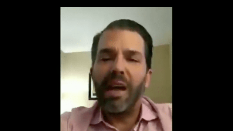 Don Jr. Calls For All Able Bodied People To Join Trump's Election Security Army